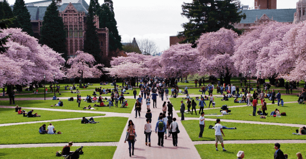 University of Washington - Best Master of Science in Nursing (MSN) Programs in 2019